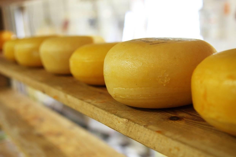 Branche: Käsereien und Milchverarbeitung